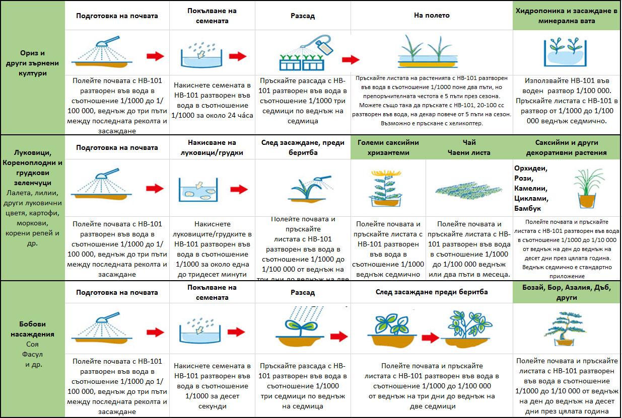 Стандартна употреба на HB-101 за основните растения
