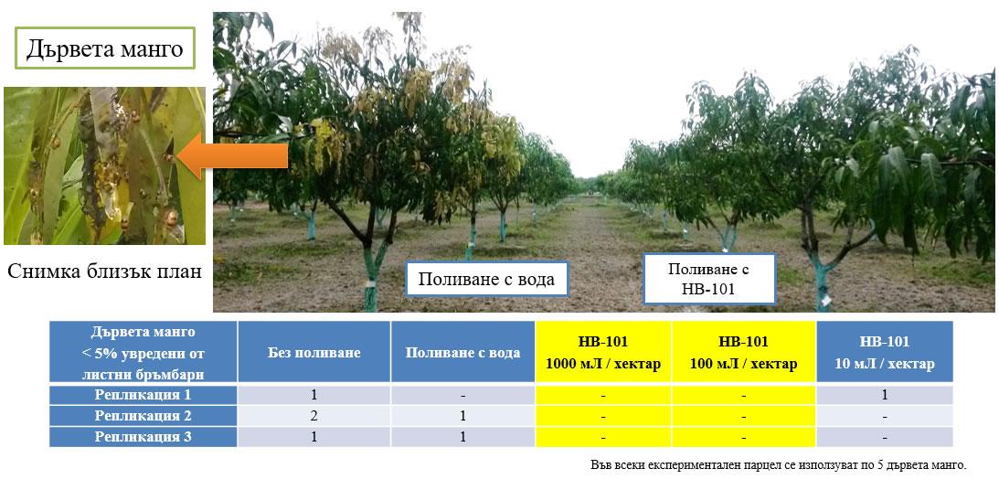 Предпазване на посевите от насекоми чрез силен растеж и добро оцветяване.